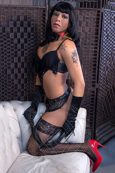Rebecca Mulatta Brasiliana  PARMA 3272610945